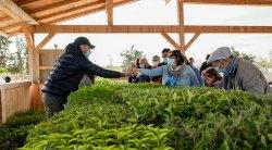 Marché aux plantes et fleurs aux jardins familiaux samedi 15 mai de 10h à 13h