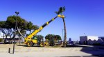 Port-Barcarès : aménagement des jardins du Lydia